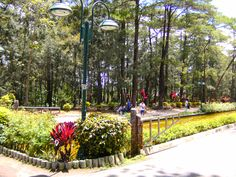 Baguio, Wright Park