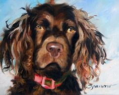 PRINT Boykin Spaniel Dog Face Art Print of by HangingtheMoonShelby