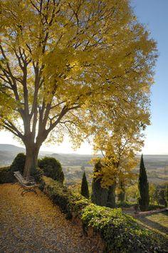 Lumière d'automne au château de Moissac