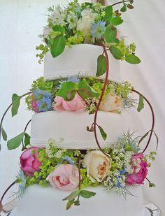 summer cake flowers Catkin