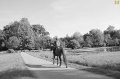 #horse #park #italy