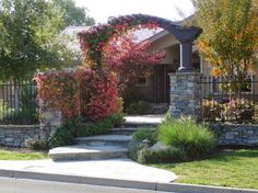 Front Entry Landscaping Design Ideas, Pictures, Remodel and Decor