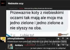 Koty – Funny Me, Wtf Funny, Polish Memes, Teen Posts, Poland, Everything, Laughter, Haha, Jokes