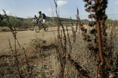 San Diego's local bike paths - Sorrento Valley: for new mountain bikers, nice wide trails, waterfall, nature, watch for poison oak, bring plenty water