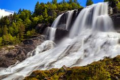 "Furebergfossen Waterfall in Norway - Pinned by Mak Khalaf The waterfall ""Furebergfossen"" in Norway. The Fureberg Falls (Norwegian: Furebergfossen) in the Hordaland fylke (west coast) is a spectacular waterfall of the Fureberg River on the R48 between Odda and Rosendal. Nature branchesflowingforestfreshwatergranitegreenkvinnheradlelee filterslong exposuremeltwatermountainnaturenorgenorwayrocktreestwigsvegetationwaterwaterfall by sorstrommen"