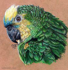 Parrot Print...Love It