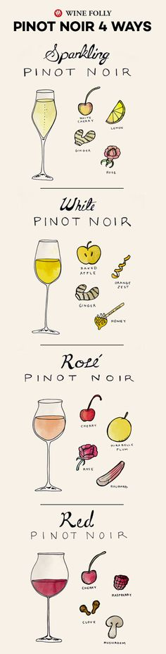 Do you love Pinot Noir? Learn the differences between the 4 varieties so you can choose your favorite! Wine Tasting Notes, Winery Tasting Room, Wine Tasting Party, Wine Parties, Sauvignon Blanc, Cabernet Sauvignon, Pinot Noir, Chenin Blanc, Boot Camp
