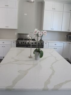 white shaker kitchen cabinet with calcatta gold quartz - - Yahoo Image Search… Kitchen Remodel Countertops, White Shaker Kitchen, New Kitchen, Kitchen Cabinet Design, Kitchen Decor, Contemporary Kitchen, Kitchen Remodel, Shaker Kitchen, White Shaker Kitchen Cabinets