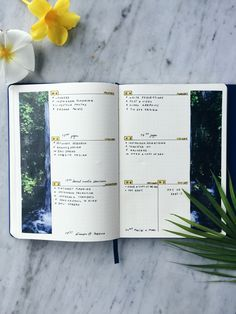 Colourful weekly spread. Check out the other key layouts in our ultimate guide on how to start bullet journaling.