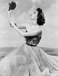 gatabella:  Ava Gardner