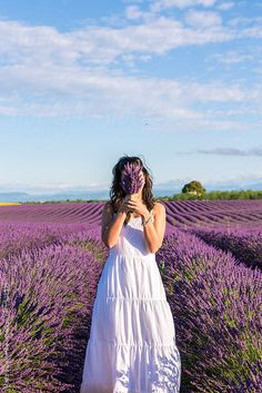 France, Provence Alps Cote d'Azur, Haute Provence, Plateau of Valensole. Woman with white dress in lavender field