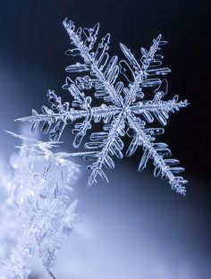 Winter is magic !
