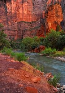 Red Zion, Zion National Park, Utah