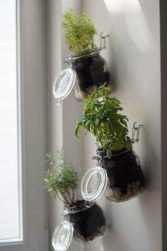 DIY herb garden, step by step instructions, indoor herb garden yourself . - DIY herb garden, step by step instructions, indoor herb garden yourself … - Vertical Herb Gardens, Vertical Garden Diy, Hanging Herb Gardens, Hanging Herbs, Diy Herb Garden, Garden Steps, Herb Gardening, Garden Guide, Organic Gardening