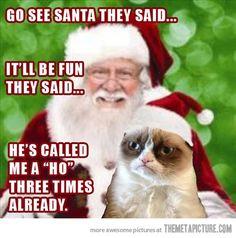 Grumpy Cat sits on Santa's lap…