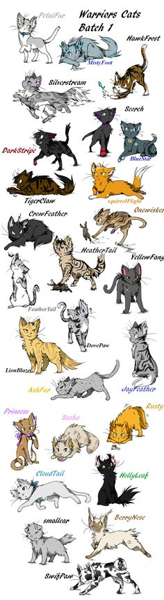 Anime Warrior Cat Drawings