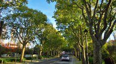 #Queluz #ParqueUrbano 2014 #Portugal Parque urbano Felicio Loureiro, Queluz