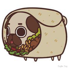Puglie Burrito by Puglie  Pug
