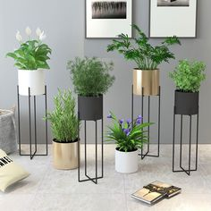 JaBlanc elegant design plant holders- a perfect way to display your plants. House Plants Decor, Plant Decor, Herb Garden Design, Inside Plants, Iron Furniture, Interior Plants, Kitchen Interior, Plant Holders, Garden Planters