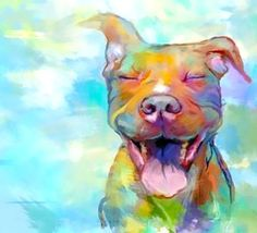 Beautiful funny colorful painting of pitbull.