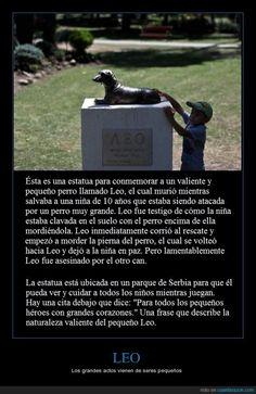 Porque un perro salchicha puede ser un héroe - Los grandes actos vienen de seres pequeños   Gracias a http://www.cuantarazon.com/   Si quieres leer la noticia completa visita: http://www.estoy-aburrido.com/porque-un-perro-salchicha-puede-ser-un-heroe-los-grandes-actos-vienen-de-seres-pequenos/