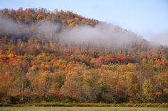 IMG#5602 Early morning fog slowly lifts from the mountains, Warren county, Pennsylvania October 10, 2010