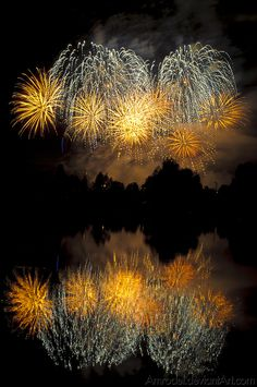 Dynamic Force Training Institute: Change it up, Create some Fireworks Spring Seminars.