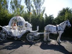 Gallery For > Real Cinderella Pumpkin Carriage Horse And Carriage Wedding, Horse Wedding, Gypsy Wedding, Dream Wedding, Real Cinderella, Cinderella Theme, Cinderella Wedding, Cinderella Pumpkin Carriage, Horse Drawn Wagon
