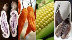 Cules son los ingredientes ms importantes de la cocina peruana