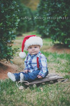 Christmas 6 Month Old Photography, Baby Photography, Ashley Hales Photography.