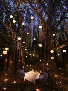 Prachtige setting voor een romantisch aanzoek tijdens een intiem diner