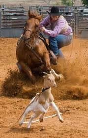 goat tying dismount :) I soo wanna do this.. too bad It'd destroy my already horrible knees and ankles.