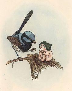 Blue fairy wren and Gum-nut babies (Superb Fairy-wren Malurus cyaneus) by May Gibbs Botanical Tattoo, Blue Fairy, Baby Tattoos, Flower Fairies, Woodland Creatures, Australian Artists, Faeries, Cute Drawings, Fairy Tales
