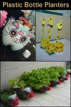 Plastic Bottle Planters – Craft projects for every fan! Plastic Bottle Planter, Plastic Bottle Crafts, Plastic Bottles, Plastic Art, Pet Bottle, Bottle Art, Recycled Bottles, Recycled Crafts, Crafts To Make