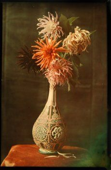 Autochrome - Antiq Photo - Photographies - [( 04. Autochromes|supprimer_numero)] - Achat, vente et estimation gratuite d'appareils photos an...