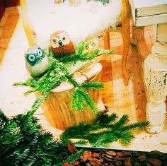 Coppia di Gufi Porta Fortuna...così  almeno narra la leggenda! #LuckyCharmOwls #xmas #xmaslist #makeawish #christmas #decoration #trulywhite #trulywhitechristmas
