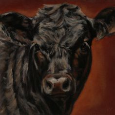 """Angus Youth by denise rich Oil ~ 12"""" x 12"""""""