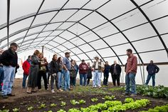 The Seeds of a New Generation - NYTimes.com: Young #Midwest #farmers find vastly more money to be made in growing other vegetables and fruits than corn.