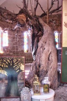 ΟΙ ΑΓΓΕΛΟΙ ΤΟΥ ΦΩΤΟΣ: Άγιος Εφραίμ ο Μεγαλομάρτυρας και θαυματουργός  Ημ...