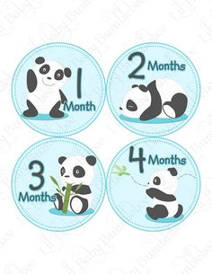 Monthly Onesie Baby Stickers - Jessie - Cute Pandas Napping Eating Playing - Baby Month Stickers Great Baby Shower Gift and Photo Prop Dream Baby, Baby Love, Panda Baby Showers, Panda Bebe, Panda Nursery, Baby Shower Gift Bags, Monthly Baby Photos, Maternity Photo Props, Baby Month Stickers