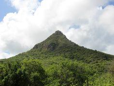 Wil je tijdens je vakantie op Curaçao actief doen en tegelijkertijd één van de mooiste stukjes natuur van het eiland zien? Dan is de beklimming van de Christoffelberg in nationaal park Christoffelpark een aanrader. De klim naar boven kost de nodige inspanning – de route is op zijn zachtst gezegd avontuurlijk te noemen – maar het uitzicht vanaf 'de kroon van Curaçao' is het absoluut waard! Een must-do voor actieve reizigers en natuurliefhebbers.