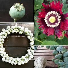 Floral Wreath, Wreaths, Instagram Posts, Home Decor, Floral Crown, Decoration Home, Door Wreaths, Room Decor, Deco Mesh Wreaths
