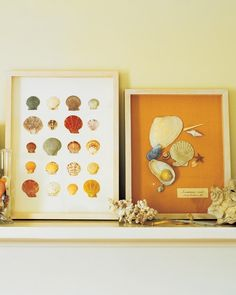 Display your family's beachside treasures in a homemade collection box. If you visit the same beach again and again, you can create an entire mantel's worth of framed shells, illustrating your finds over the years.