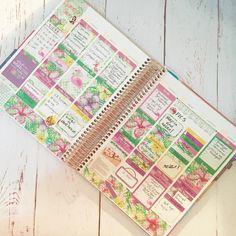 My finished week in Erin Condren.  Sticker kit from my shop  #erincondren #erincondrenlifeplanner #erincondrenstickers #erincondrenverticallayout #eclp #weloveec #llamalove #pgw #plannergirl #planneraddict #plannercommunity #plannerstickers  #Planner #planning #planners #plannerstickers #agenda #plannerdecor #plannernerd #plannerlove #planneraddict  #eclp #plannerclips #plannerclipaddict #etsy #etsyhunter #etsyfinds  #shopetsy #etsyseller #etsystore
