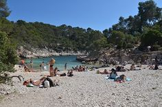 Calanques entre Marseilles et Cassis Pin, Provence, Photos, France, Water, Outdoor, Beach, Pictures, Water Water