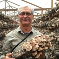 #365: How to Grow Your Own Great Tasting Mushrooms