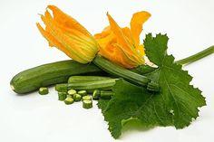 <p>* Muy bajo en calorías en comparación con otras hortalizas.</p><p>* Gran fuente de manganeso, muy beneficioso para la…