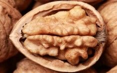 Walnuts' effect on breast cancer prevention, as well as its effect on those with breast cancer