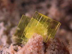 Saléeite, Mg(UO2)2(PO4)2·10H2O,  La Commanderie mine, Le Temple, Deux-Sèvres, Poitou-Charentes, France