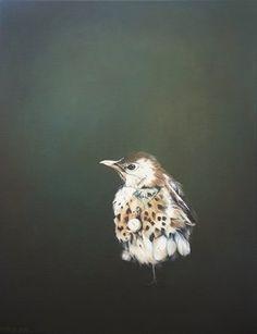 Why Th'Rush? - Jane Crisp 2012